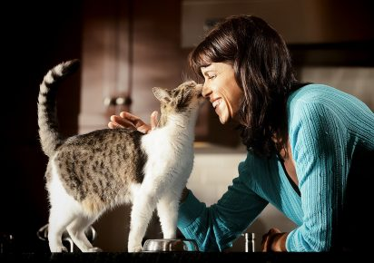 Женщина гладит кошку