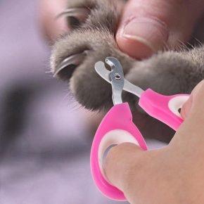 Ножнички для стрижки когтей