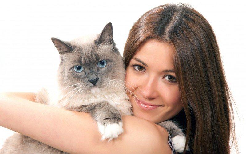 Как понять, что кошка любит хозяина: характерные приметы