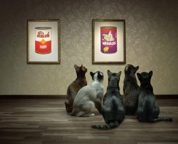 Кошки смотрят на картину