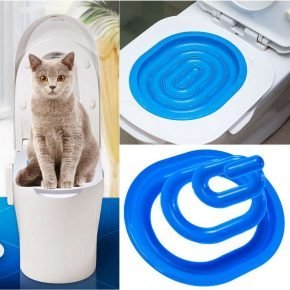 Toilet Train Your Cat