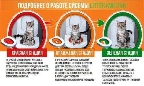 Инструкция к Litter Kwitter