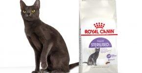 Royal Canin для стерилизованных и кастрированных животных