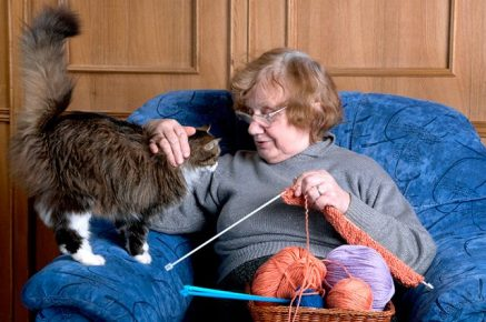 Кошка и старушка