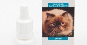 Глазные капли для собак и кошек Барс