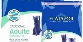 Flatazor Crocktail Adulte Poissons