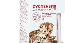 Суспензия для кошек и котят Празител