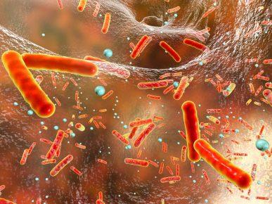 Антибиотик и бактерии