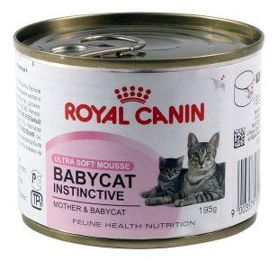 Консервы для кормящих кошек и котят