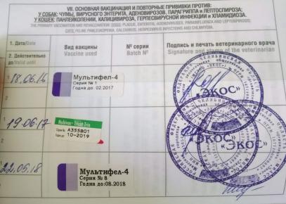 Ветеринарный паспорт страница вакцинации