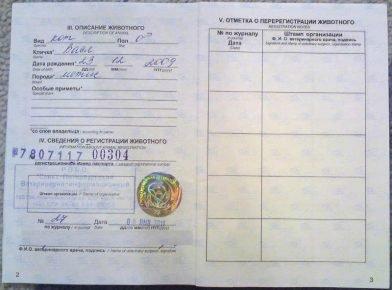 Ветеринарный паспорт страница регистрации и перерегистрации