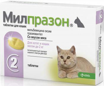 Милпразон для котят весом менее двух килограмм в кпаковке