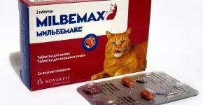 Таблетки от глистов для кошек Мильбемакс