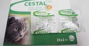 Таблетки от глистов для кошек Цестал