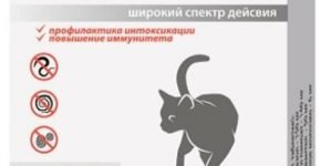 Таблетки от глистов для кошек Фенпраз