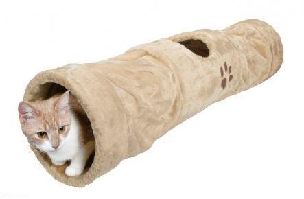 Котик в тоннеле