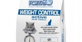 Forza10 Active Line