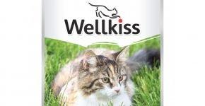 Консервы Wellkiss для взрослых кошек