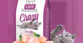 Корм Brit Crazy для котят