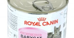 Royal Canin мусс