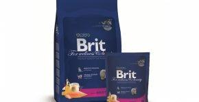 Корм для кошек Brit Adult