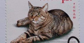 Кошка ли хуа на марке