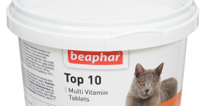 Пищевая добавка с таурином Топ 10