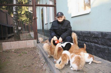 Юрий Антонов и его кошки