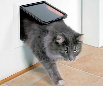 Окошко (створка) для кошки