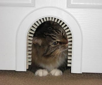 Дверцы в форме арки
