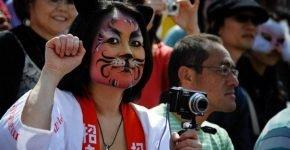 Фестиваль кошек (Бельгия)