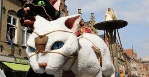 Фигуры котов на фестивале