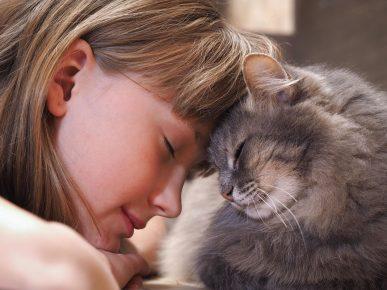 Кошка и девушка касаются друг друга лбами