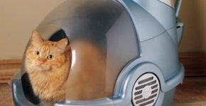 Автоматический лоток для кошки