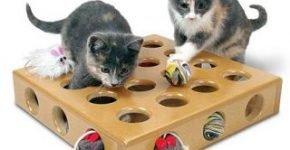 Интерактивная игрушка для котят