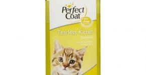 Перфект Коат для котят