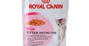 Влажный корм Роял Канин для котят