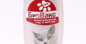 Шампунь БиоВакс для корокошёрстных кошек
