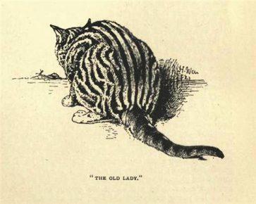 Кошка по кличке Олд Леди