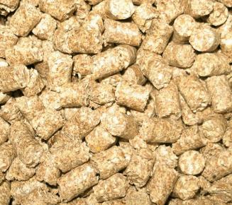 Спрессованные гранулы наполнителя «Золотой кот»