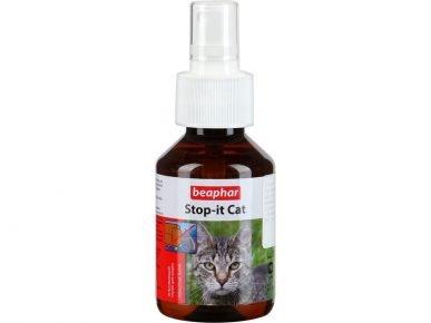 Stop-it Cat