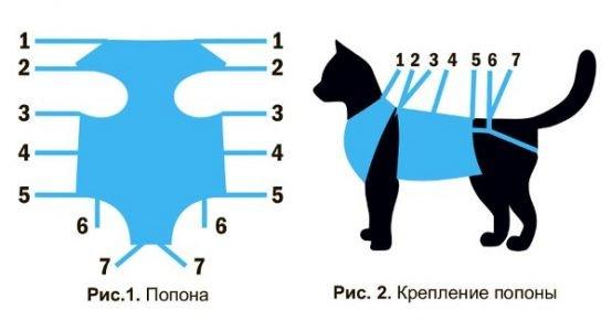 Схема фиксации попоны