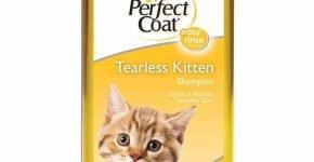 Шампунь для котят 8in1 Tearless Kitten