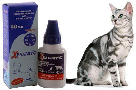 Хелавит С и кошка