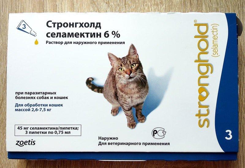 Что такое стронгхолд для кошек