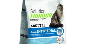 Trainer Solution Sensintestinal