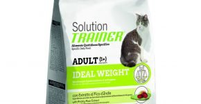 Trainer Solution Ideal Weight