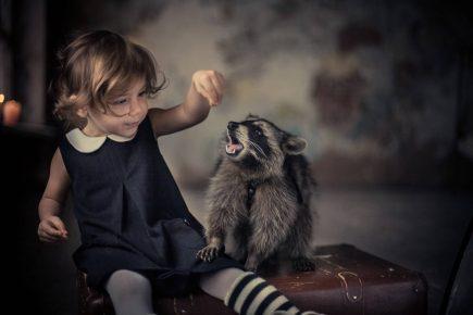Енот и ребёнок