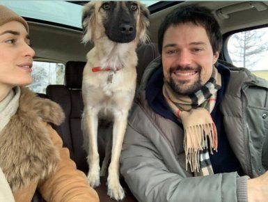 Груша вместе со своими хозяевами в машине