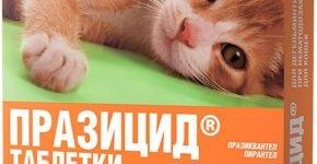 Таблетки от глистов для кошек Празицид